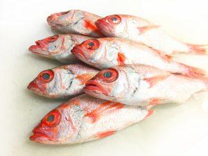 おうちグルメ築地築地買物代行築地のサブちゃん魚